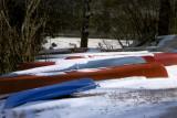canoe 12x8.jpg
