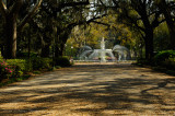Welcome to Forsyth Park
