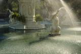 Sunlit Shower