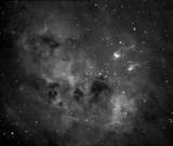 IC 410  et ses têtards cosmiques