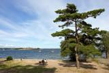 Boattour to Sandhamn