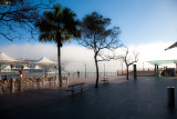 Sydney Harbour early morning fog