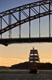 Svanen tallship sailing under Sydney Harbour Bridge