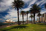 Sydney Opera House with palm trees