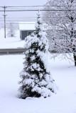 April 27-28 snowstorm