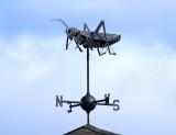 Grasshopper - Goffstown, N.H.