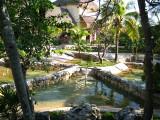 Crocodile enclosure