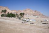 En Gedi, Dead Sea shore