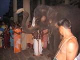 .... doing Thiru-samarak kainkaryam