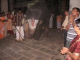 ... and before the Lord of ubhayavibhuti - SrI Emperumanar