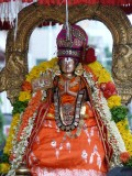 Aalavandar Thirunakshatram - Alavandar during thiruveedhi Purappadu2.JPG