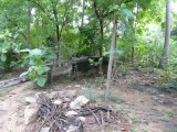 Structural remains of houses where our poorvacharyas lived2.JPG