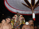 Parthasarathi on Thirukacchi nambigal sattrumarai day.jpg