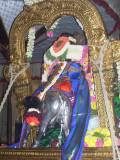 Sri Parthasarathy_Rajagopalan Thirukolam8_8th day.jpg