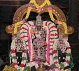Parthasarathi in Muthangi.jpg