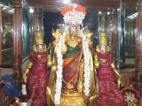 Serthi Uthsavam1_5th Day Night.jpg