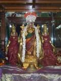 Serthi Uthsavam2_5th Day Night.jpg