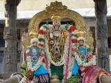 1st Utsavam BakthaVatsalan.JPG