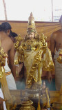 Perumal during Tirumanjanam-9th Day.JPG