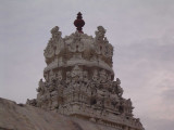 021-Day02-Thiruvengadathappan Vimanam with its exquisite sculptures.jpg