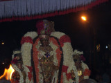 Sri Perarulalan_Thiruther uthsavam6.jpg