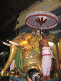 03-Partha Utsavam.Day 6.Evening.yAnai vAhanam.JPG