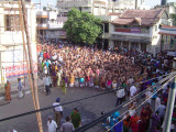 08-Parthasarathy Utsavam.Day 07.Ther.Divya Prabanda Goshti in full view.JPG