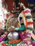 02-Parthasarathy Utsavam.Day 08.Vennai Thaazhi Kannan.jpg