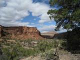 2009 April Dominguez canyon CO