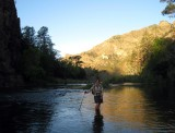 Early morning in the lower Gila river