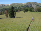 Gallatin ridge trail