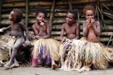 Vanuatu: Tanna, Eromango, Efate, Malekula (2009)