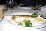 Grilled bar (sea bass)