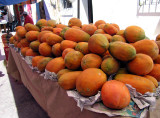 Huge papayas