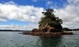 Taylor Island near Paihia