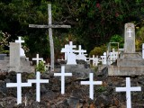 sea of crosses