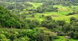 lust waipio valley
