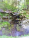 Beauty in Eastern Tennessee