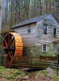 Places to See in TN