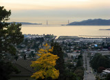 San Francisco Bay and Bridge from Moser Lane, Mid-zoom