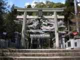 Haritsuna-jinja torii
