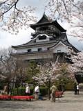 View across the castle courtyard with sakura