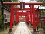 Row of torii at Sankō-Inari-jinja