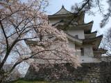 Iga Ueno-jō 伊賀上野城