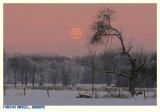 Low Winter Moon