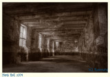 Remember Abydos?