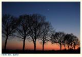 Twilight with The Moon and Venus I - Schemering met de Maan en Venus I