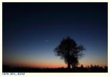 Twilight with The Moon and Venus II - Schemering met de Maan en Venus II