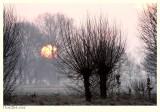 Here comes the Sun - Hier komt de Zon