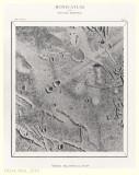 Tafel 2 - Messier